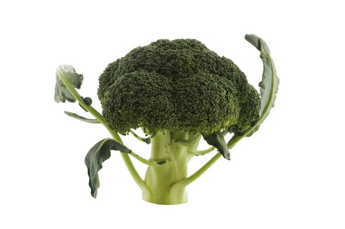 8437broccoli